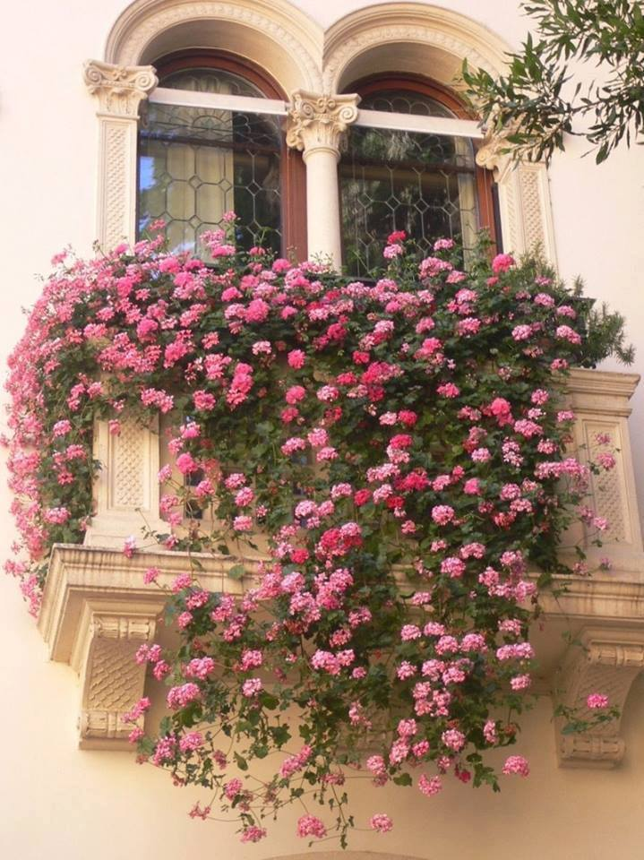 mydesiredhome - blooming balconies ideas32