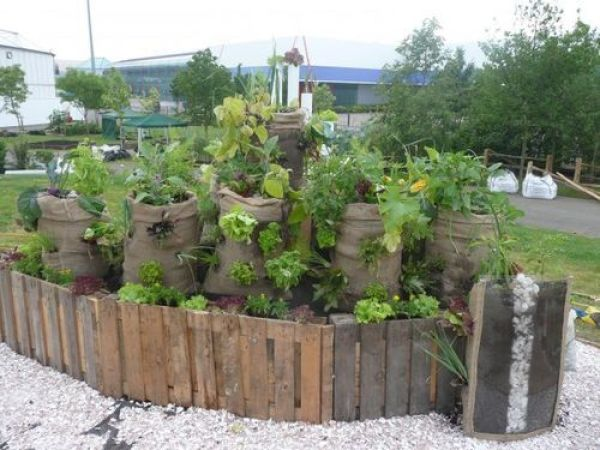 gardening tips and design ideas16