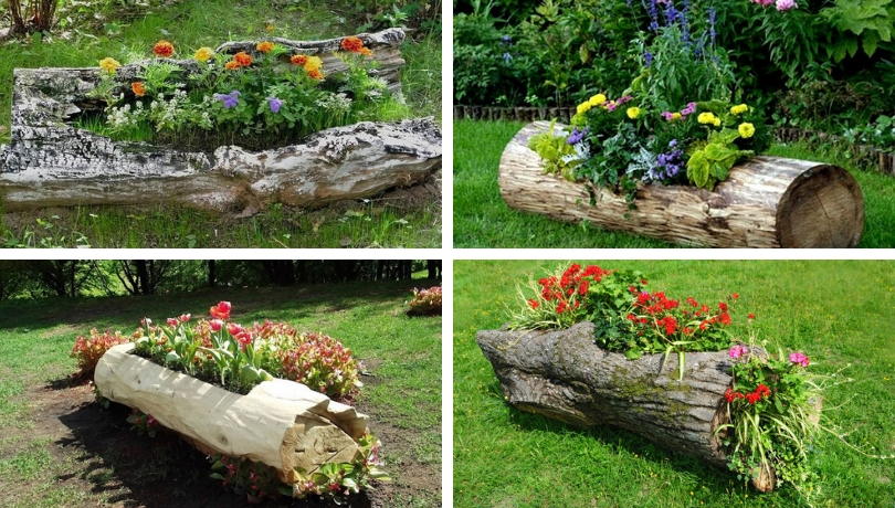 Incredibly Beautiful Diy Flowerbed Ideas From Logs Original