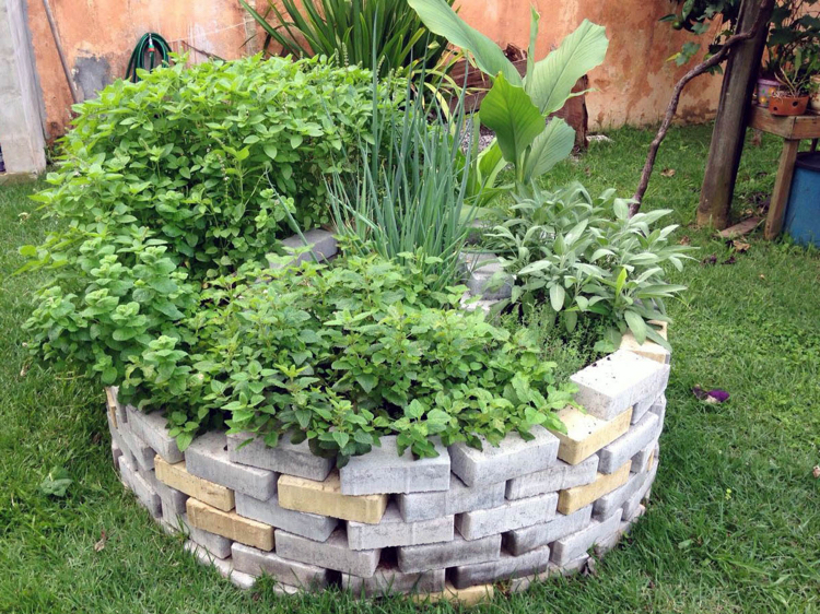 How to plant spiral herbal gardens correctly - list with suitable