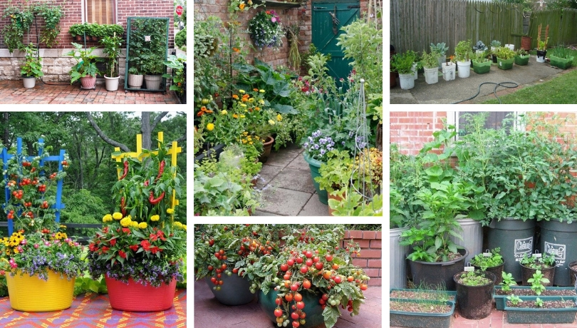 Creative DIY patio ideas for vegetable gardening in pots ... on Creative Patio Designs id=83006