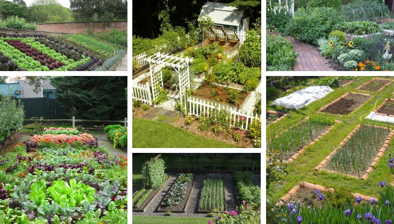 39 ideas for a great DIY vegetable garden - what do you ...