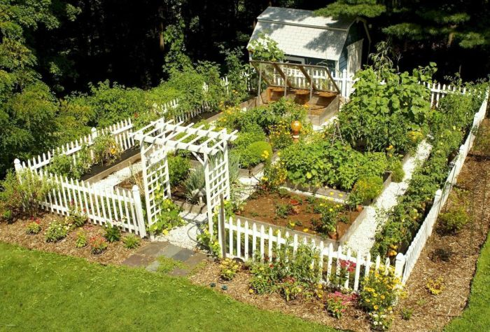 45 Affordable Diy Design Ideas For A Vegetable Garden My Desired Home
