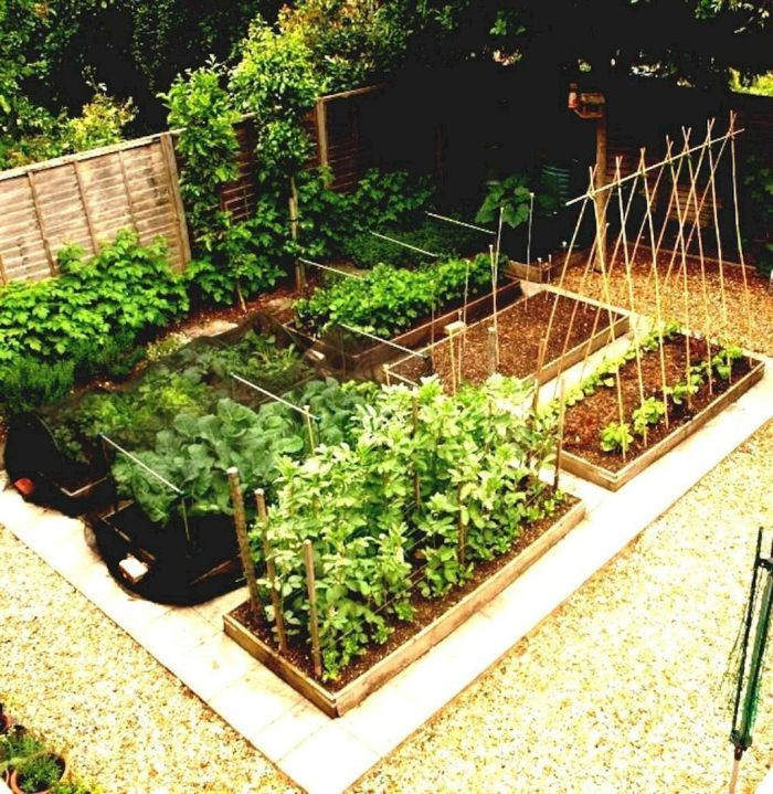 Vegetable Garden Design Ideas: 45 Affordable DIY Design Ideas For A Vegetable Garden
