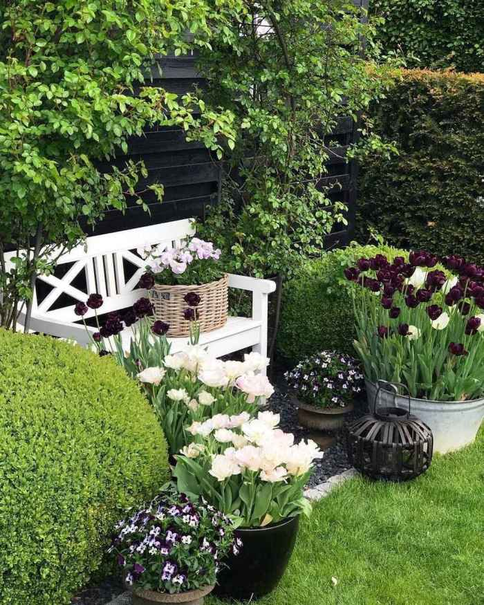 Small Garden Secrets: Best Tips And Ideas For Small Gardens You Need To Know