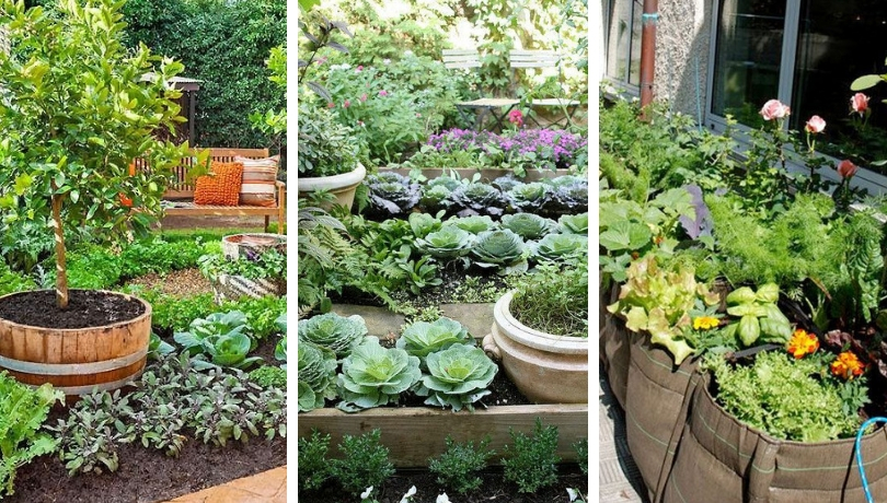 Simple DIY vegetable garden design ideas for inspiration ...