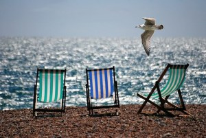 浜辺の椅子とカモメ