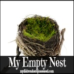 My Empty Nest