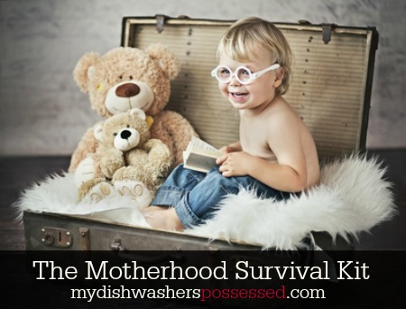 The Motherhood Survival Kit