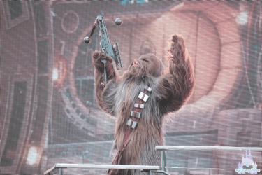 Saison-Force-Star-Wars-8