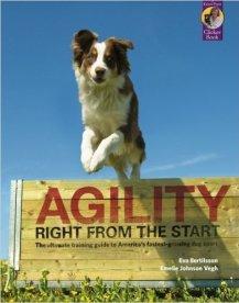 agilitybook