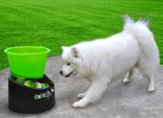 Go Dog Go Ball Launcher