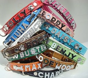personalised leather dog collars