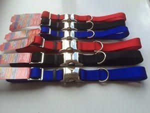 personalised NYLON dog collars