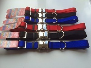 personalised NYLON dog collars