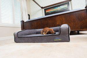 Buddyrest Memory Foam Dog Bed