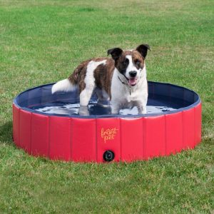 Frontpet best paddling pools for dogs