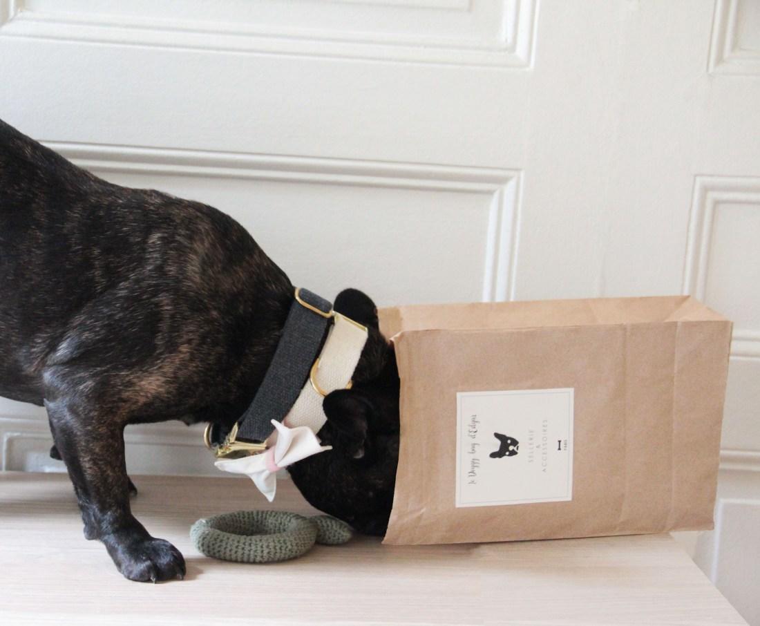 test1 doggybag.jpg