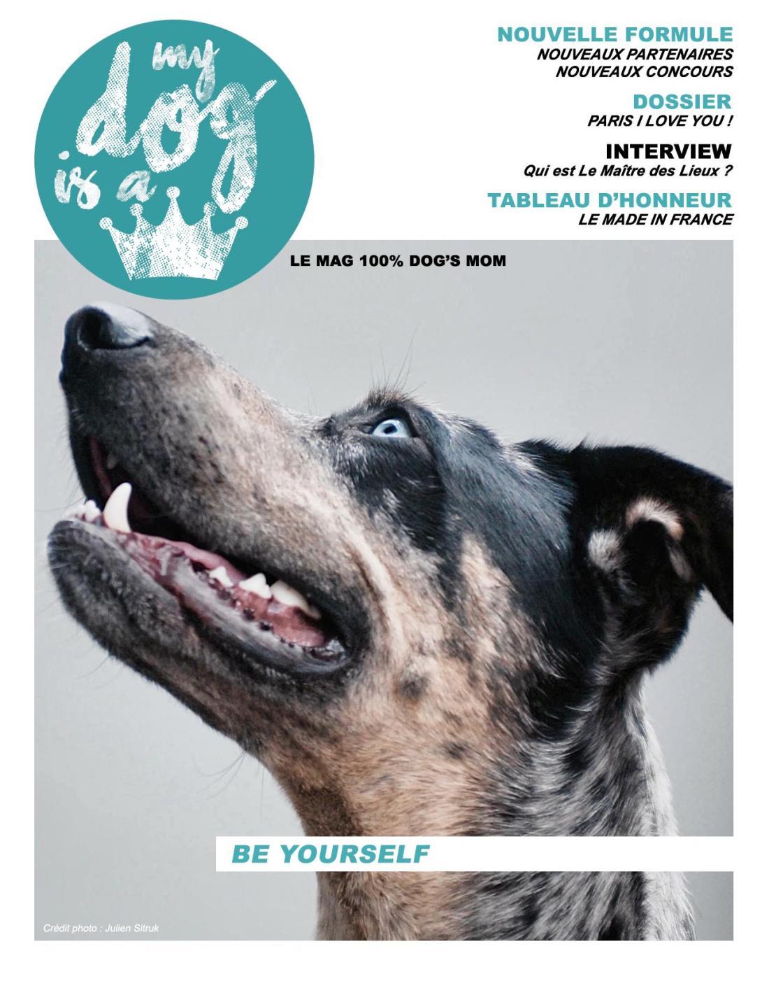 cover November.jpg