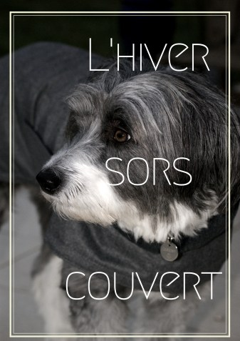 L'hiver sors couvert !.jpg