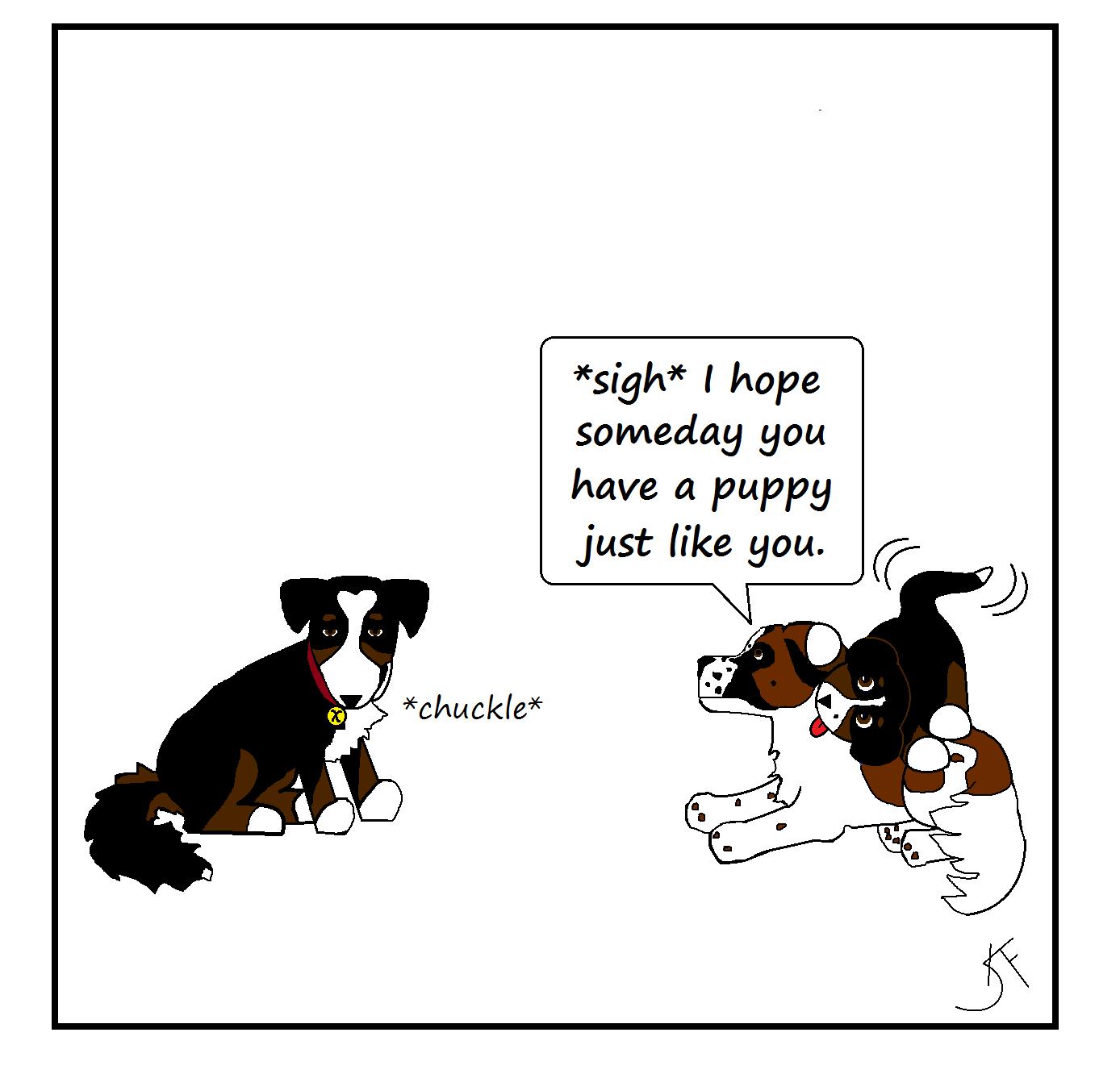 My Dog Do
