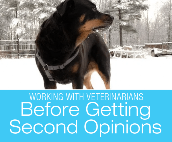 Before Getting a Second Opinion: Something Not Right? Speak Up