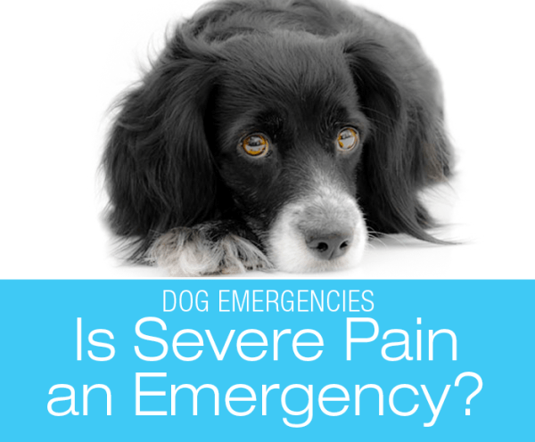 Is Severe Pain an Emergency?