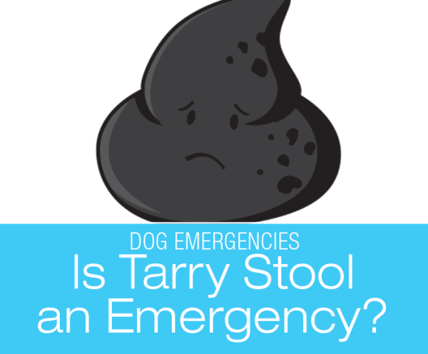 Is Tarry Stool an Emergency?