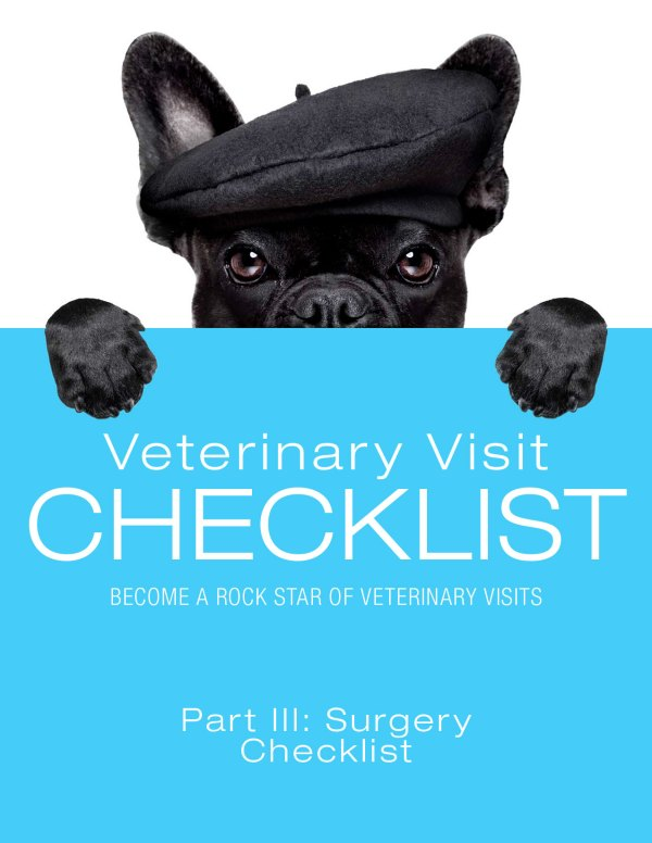 Veterinary Visit Checklist Part III: Surgery Checklist