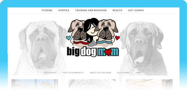 Best Dog Blogs of 2020:  Big Dog Mom