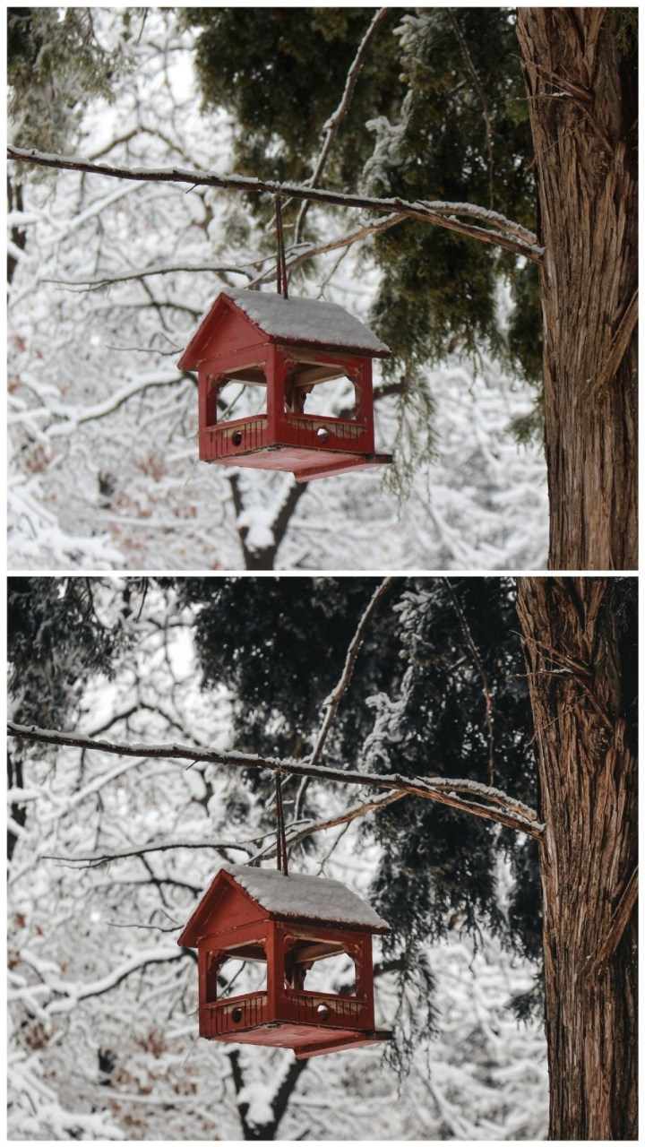 two birdhouses with trees and snow comparing edits