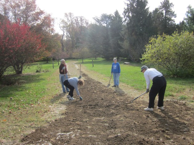 Volunteers of the Cylburn Arboretum Association