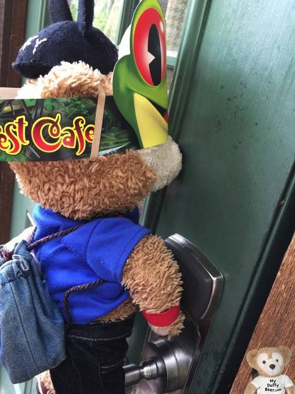 Duffy the Disney Bear opens his Wilderness Campground Cabin door with his Magic Band