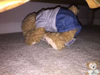Duffy the Disney Bear hides under the dress in a Thunder Boomer Storm