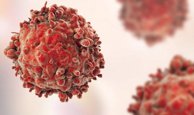 癌症为什么不能被消灭?