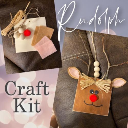 Reindeer craft kit
