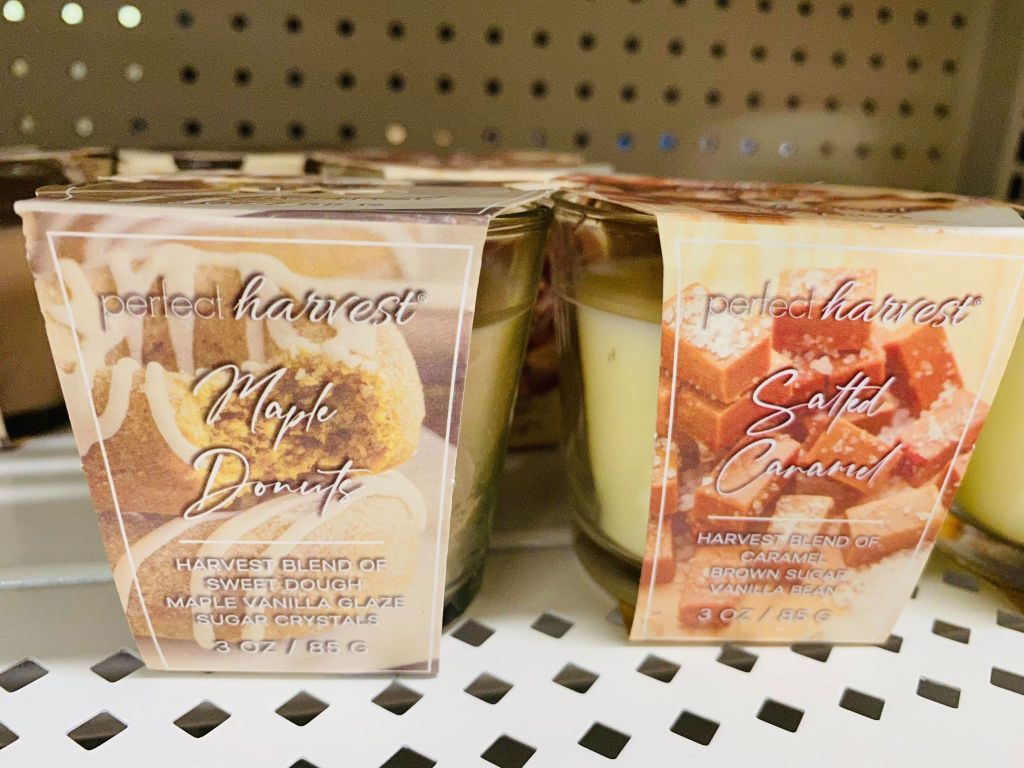 fall candles from the Dollar General
