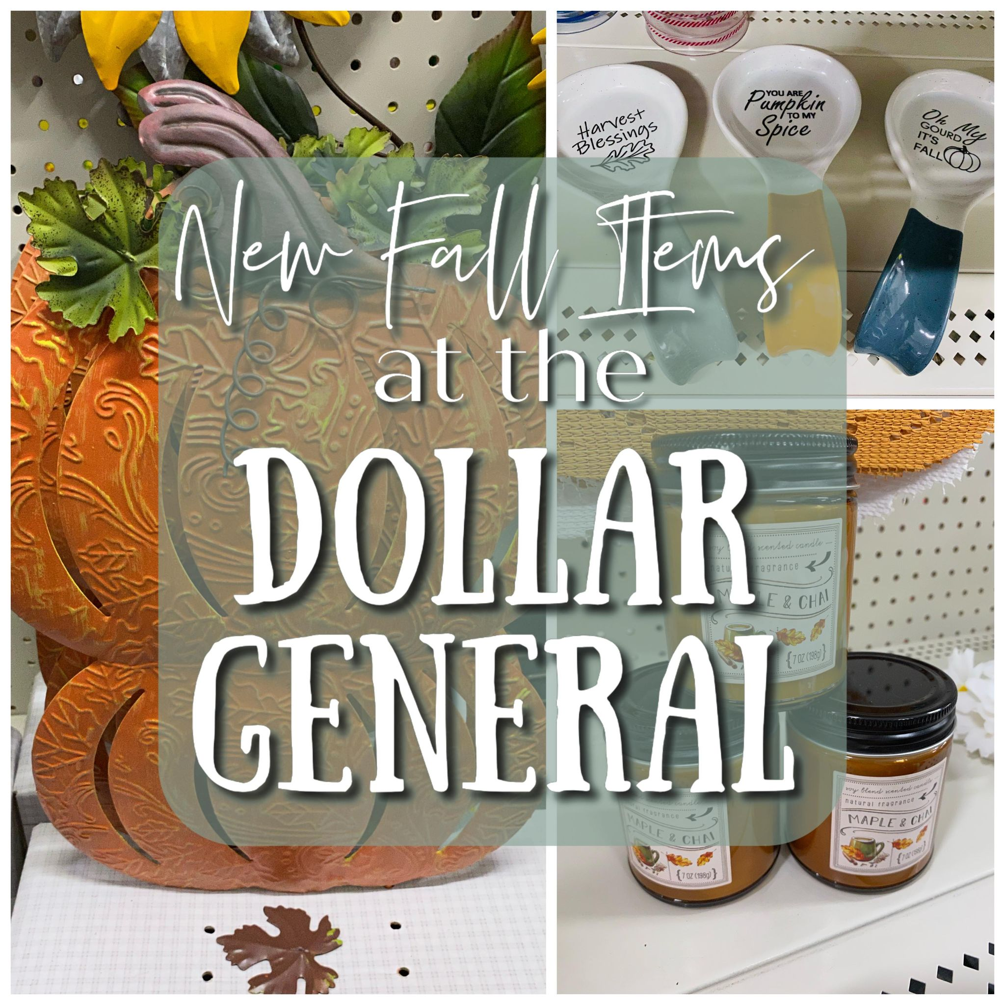 Read more about the article New Fall Decor at the Dollar General!