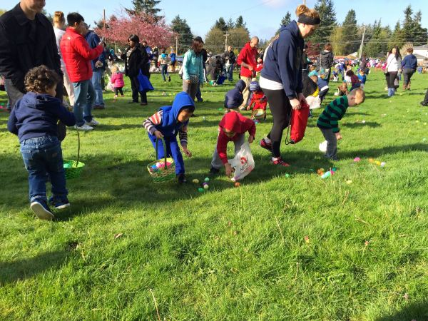 Kids in the 3- and 4-year-old age group gather eggs at the annual Edmonds Lutheran Church-sponsored hunt in the Highway 99 neighborhood, which drew an estimated 350 people.