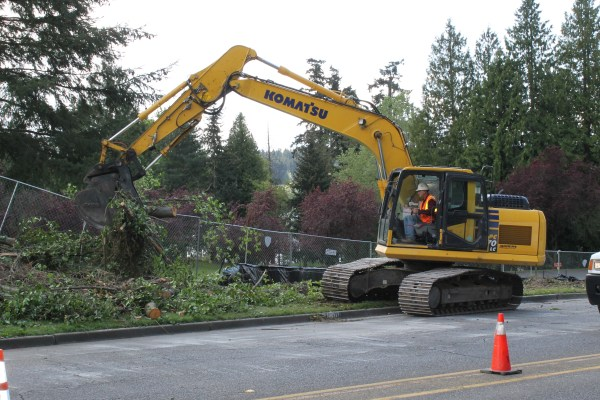 To make room for the Lakeview Trail, a number of trees are being removed along 236th Street SW just north of the Nile Golf and Country Club.
