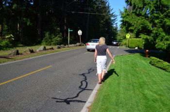 The lack of shoulder and sidewalk on the north side of 236th Street Southwest forces pedestrians to share the roadbed with vehicles, which often have to swing out across the yellow lines to avoid pedestrians.
