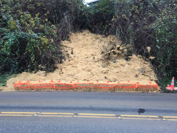 The stabilized slope at site of mudslide. (Photo by Larry Vogel)