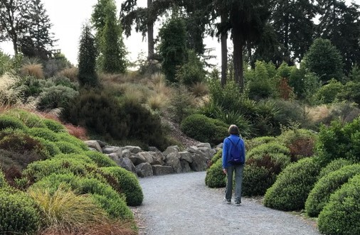 The Pacific Connections Garden.
