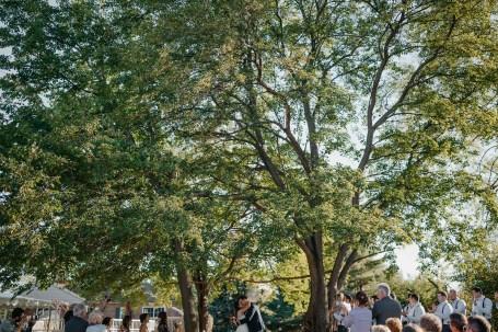 backyard-wedding-142