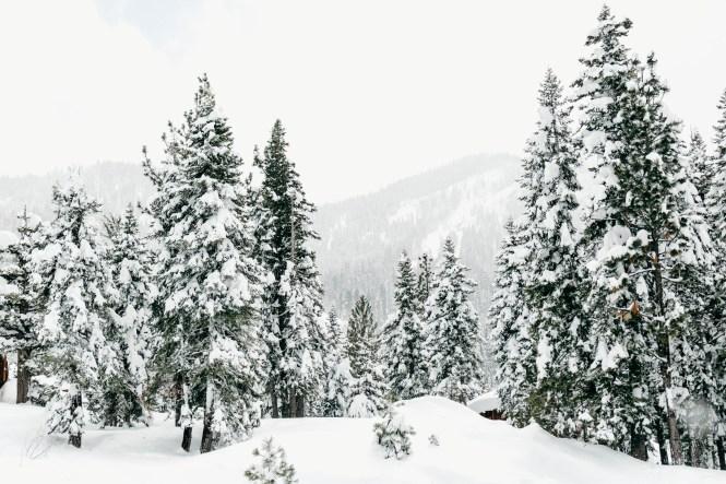 tahoe-winter-wedding-14