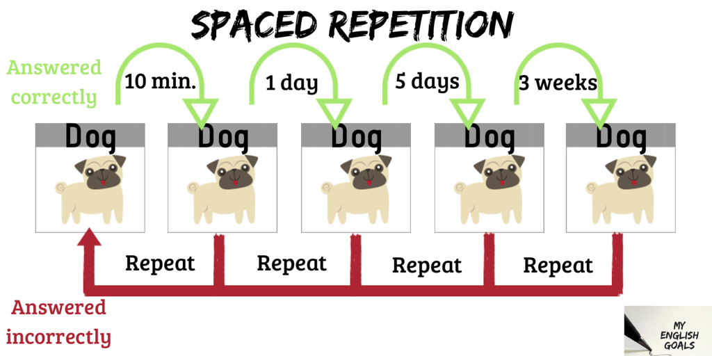 Spaced Repetition helps remember vocabulary forever