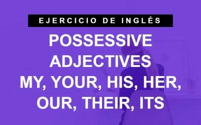 Practica los adjetivos posesivos en inglés – Possessive Adjectives (A1 Principiante)