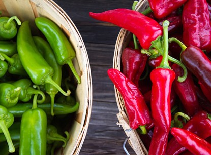 Red or green chillies are staples in New Mexican cuisine.