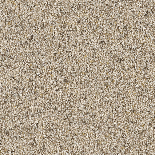 Awe Inspiring Carpet By Dreamweaver 6 Colors Myers Carpet And Flooring Center