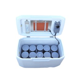 Perfa-Cure-Mini Field Curing Box